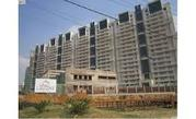 4 BHK Flats For Rent  Lalagune sun city 9811280160