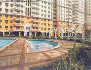 4 Bedroom Flats For Rents DLF Belvedere Park Call 9811280160