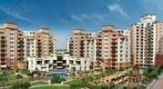 3 BHK For Rents Vipul Orchid Gardens Sector54 Call 9811280160