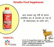 animal feed companies