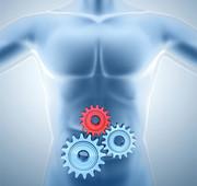 Ayurvedic medicine for detoxification in karnal