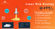 Affordable Web Hosting services at Just Rs.499