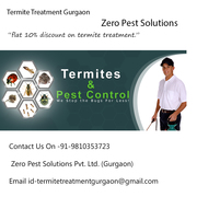 Termite Treatment Gurgaon. Zero pest control solution.
