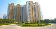 rps palm floors faridabad review - rps palms floor plan