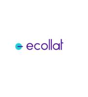 eCatalog Services To Optimize Your Business Process