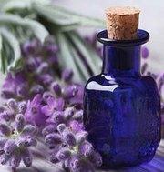 Lavender Co2 Extracts Oleoresins Supplier,  Manufacturer & Exporter - O