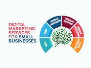 Top Digital Marketing institute in Rohtak